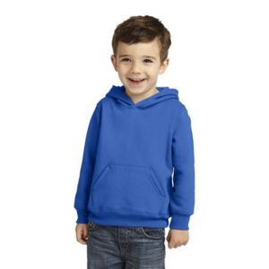 Toddler Pullover Hooded Sweatshirt Thumbnail